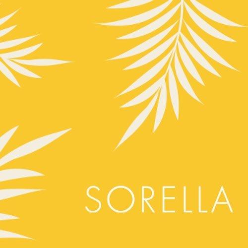 Sorella-branding-knaphill-surrey